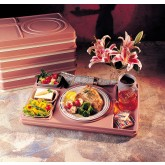 Cover Bravo Insulated Tray (10 per case) Multiple Colors Available